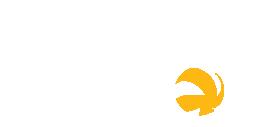 icone-bola